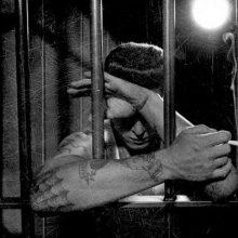 MIRÁ EL VIDEO «Social Distortion» – «Prison Bound» Guitar Center Sessions» del álbum «Prison Bound» (1988)