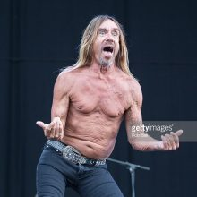MIRÁ EL VIDEO «Iggy Pop» – «I Wanna Be Your Dog – Live at The Isle Of Wight Festival » (2016)